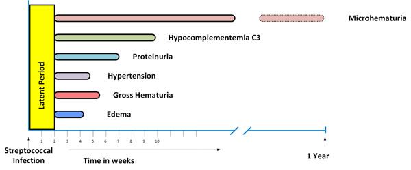 Acute Glomerular Diseases in Children